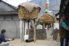 Life in Nepal