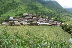 Naiche village is a Gurung village, 2 hours walk from Thulo Besi, and 1 hours from the intake site for the Mid-Nyadi Hydro Project.